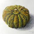 かぼちゃ 水彩色鉛筆 F0